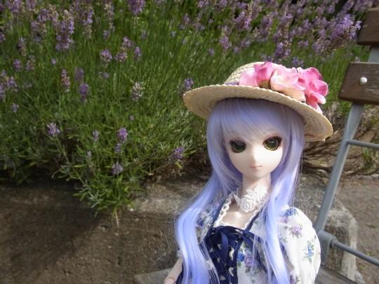 神奈 世界の庭園12
