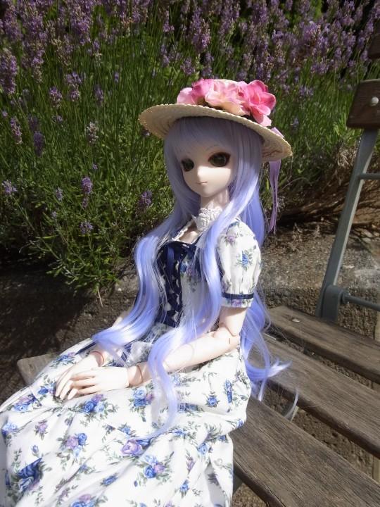 神奈 世界の庭園11