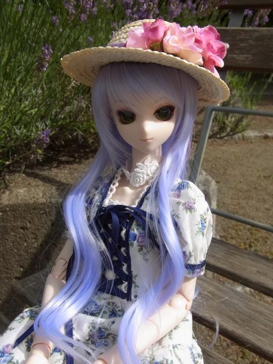 神奈 世界の庭園10