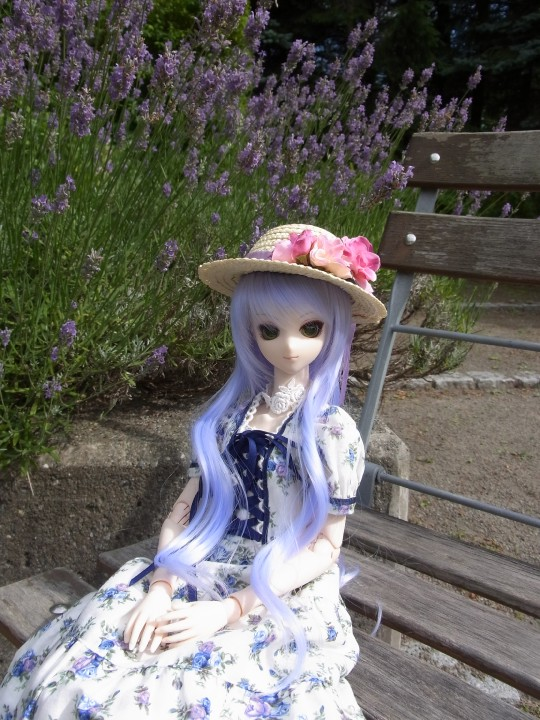 神奈 世界の庭園08