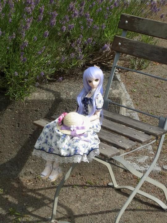 神奈 世界の庭園18
