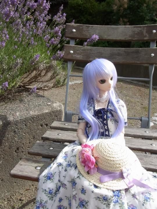 神奈 世界の庭園19