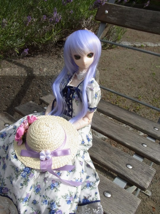 神奈 世界の庭園17
