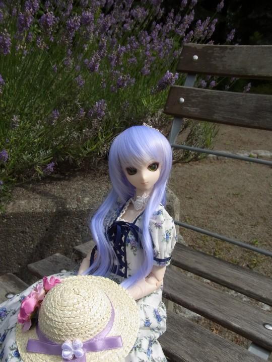 神奈 世界の庭園16