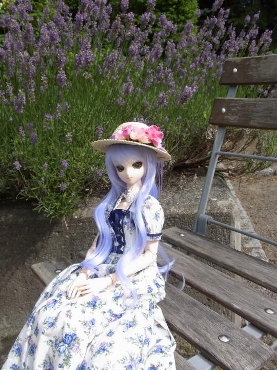 神奈 世界の庭園15