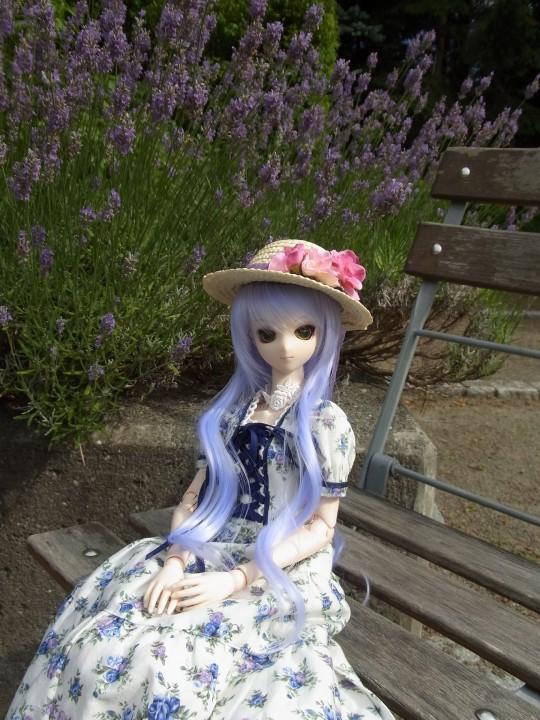 神奈 世界の庭園14