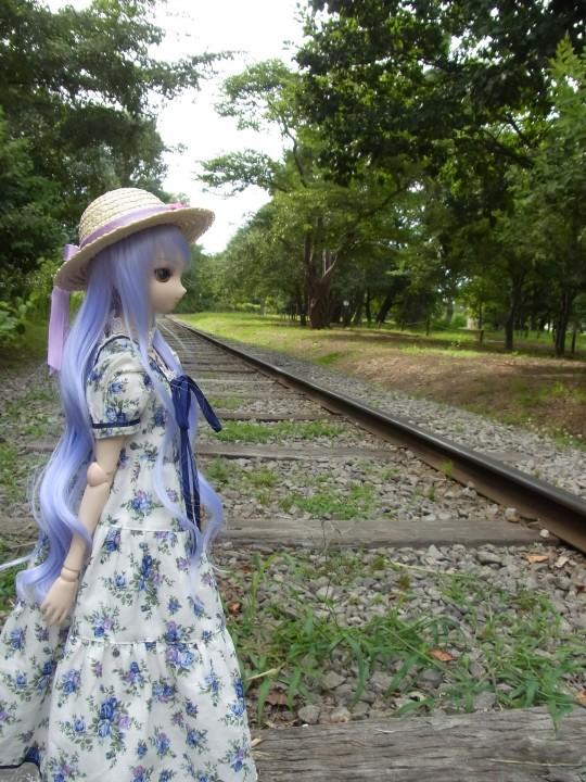 神奈 世界の庭園22