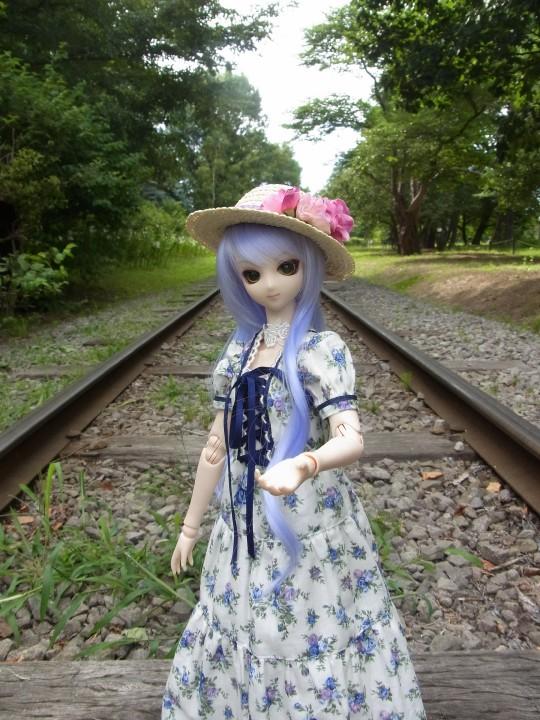 神奈 世界の庭園20