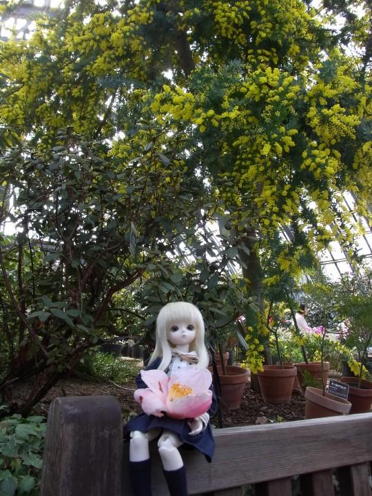 燈 百合が原公園44