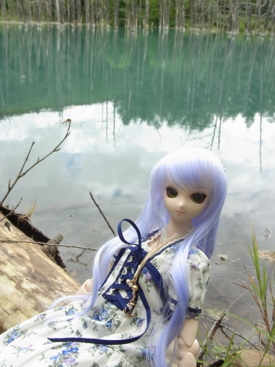 神奈 青い池03