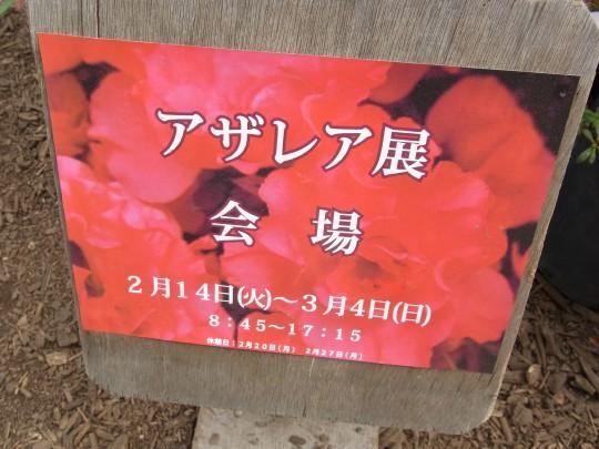 燈 百合が原公園27