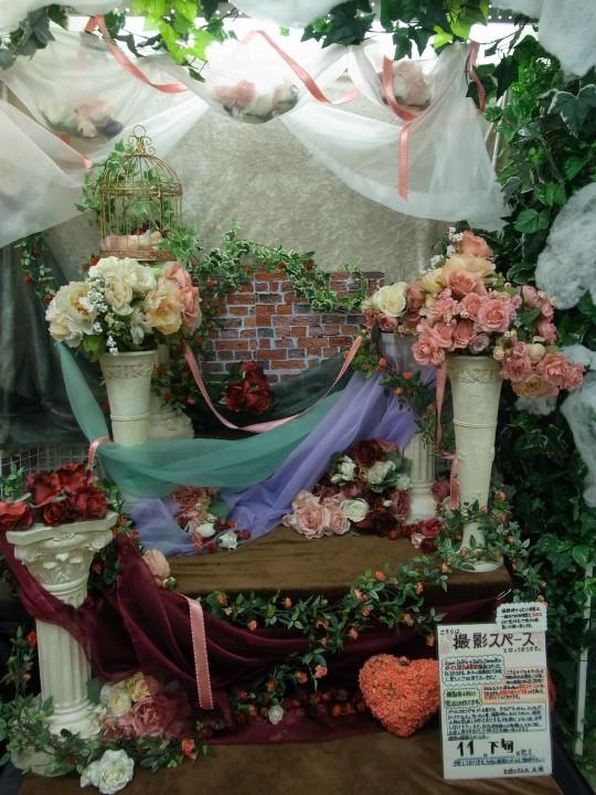 11月札幌SR 癒羽01