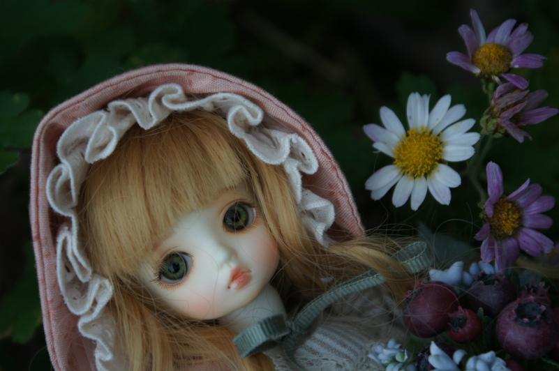 0・20141124 (11)