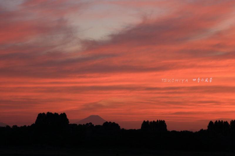 秋ヶ瀬の夕日 6