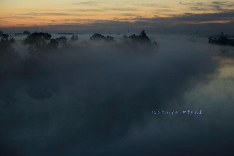 秋ヶ瀬橋から見る霧の風景