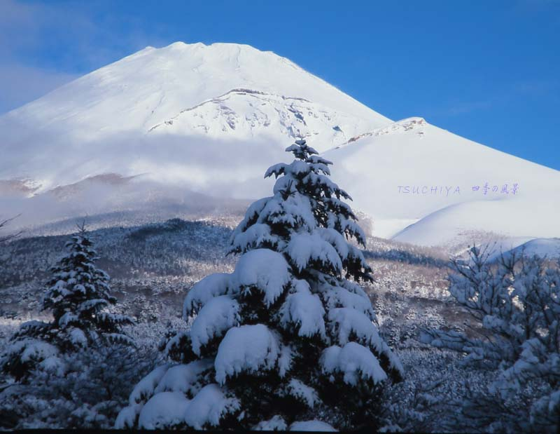富士山 ブログ