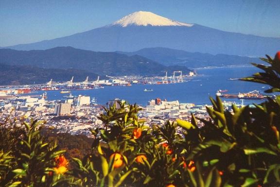 日本平写真