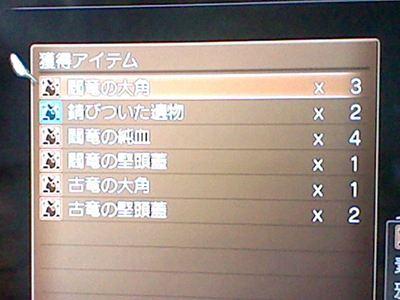 HNI_0014_R_20120527152445.jpg
