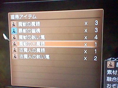 HNI_0032_R_20120707202717.jpg