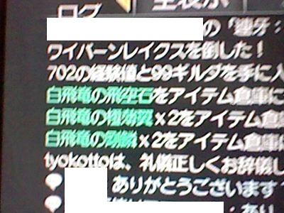 HNI_0035_R_20120519192717.jpg