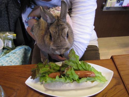 お野菜、食べていいの?