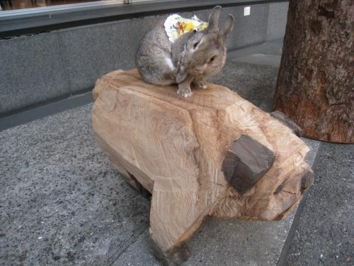 木のいい香り~!