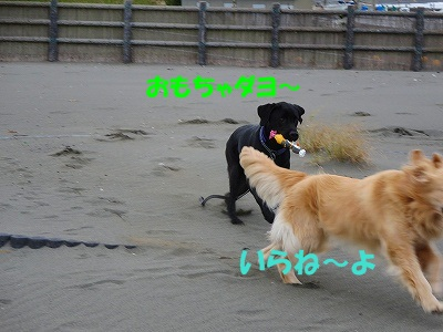 IMG_3644.jpg