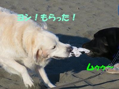 IMG_3881.jpg