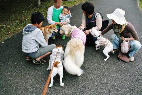 2012長岡公園833