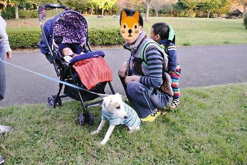 2012長岡公園903