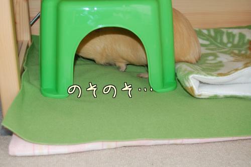 別荘ジプシー4