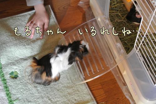 大阪梅ちゃん☆前編9