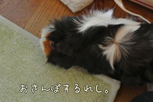 大阪梅ちゃん☆前編8