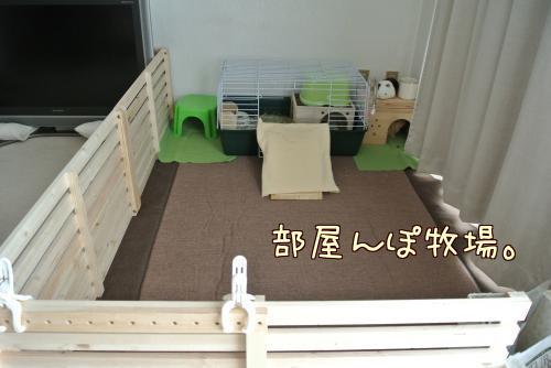 部屋んぽ牧場1