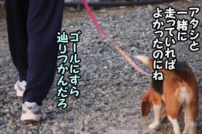マラソン9