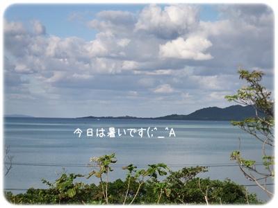 2014_11080005.jpg