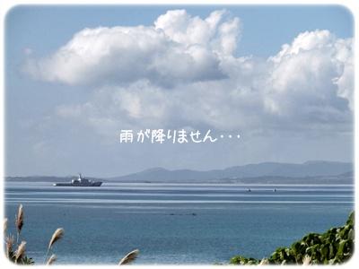 2014_11250009.jpg