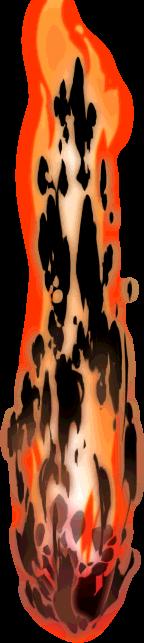 9421580 火炎