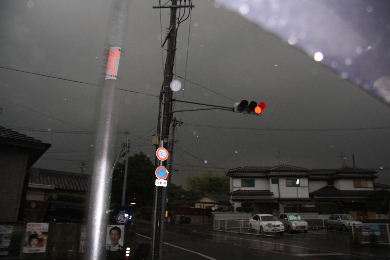 ゴリラ豪雨0002