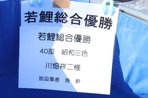 Nishikikoi0011.jpg