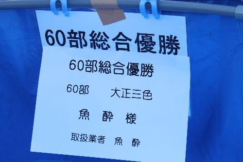 Nishikikoi0013.jpg