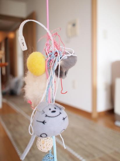 P6171187urabanashi.jpg