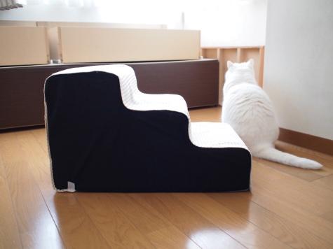 P6241564urabanashi.jpg
