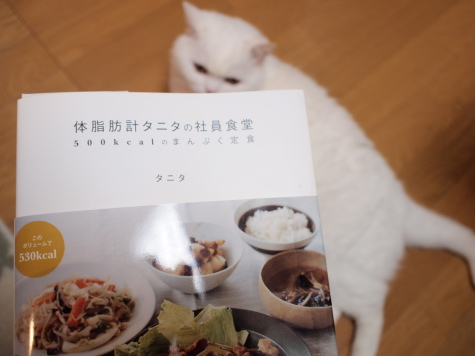 P7242829urabanashi.jpg