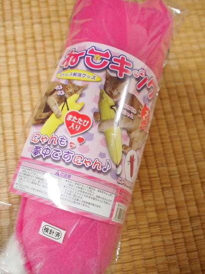 P8063258urabanashi.jpg