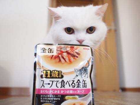 P8093378urabanashi.jpg