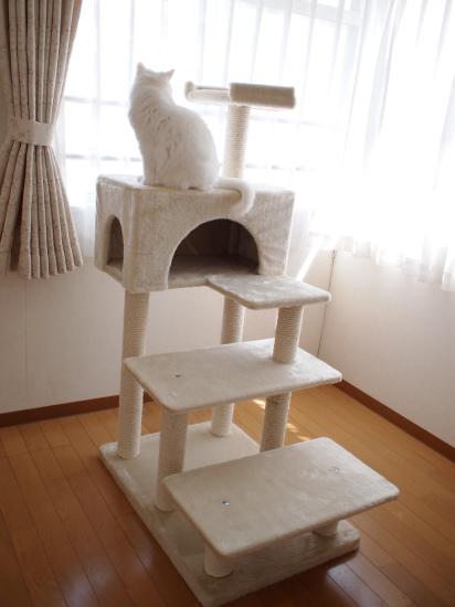 P8133605urabanashi.jpg