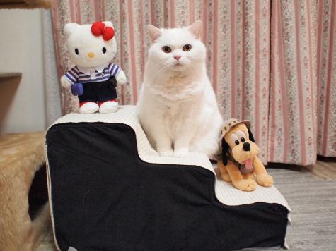 urachan04urabanashi.jpg