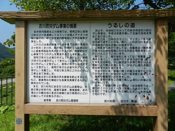 衣川1号11