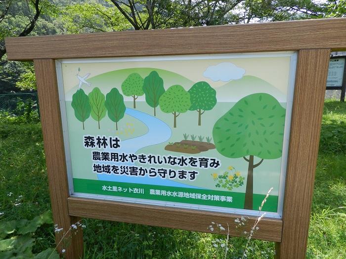 衣川2号15